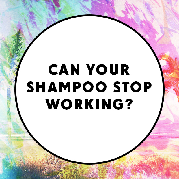 Can your shampoo stop working?