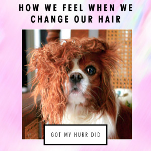 Got my hurr did - How we feel when we change our hair