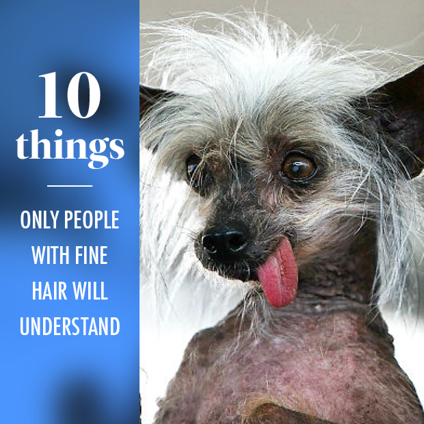 10-things-only-people-with-fine-hair-will-understand-hairless-dog