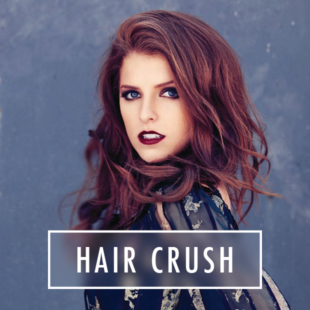 Anna Kendrick's Hair