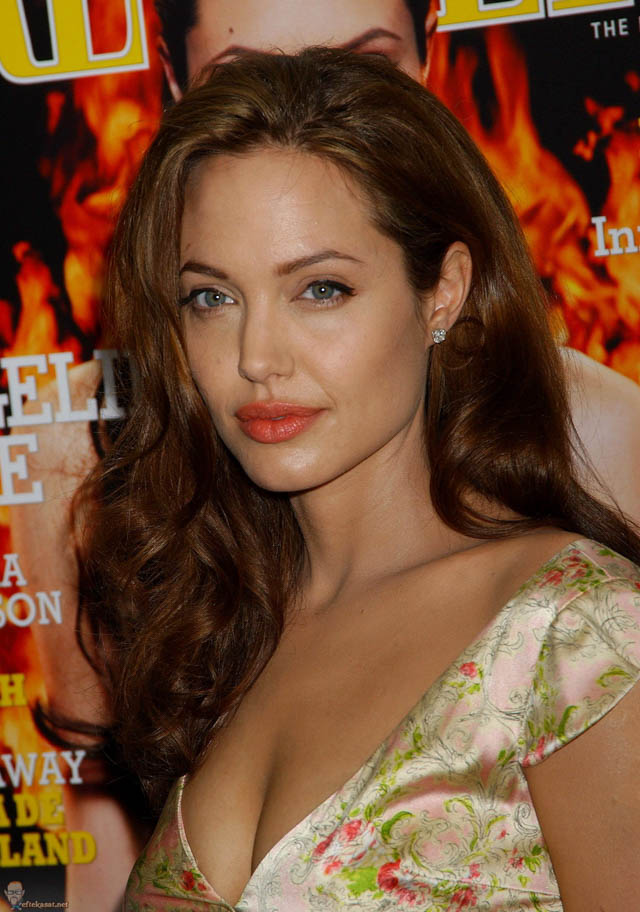 Angelina Jolie S Hair History Hair Extensions Blog