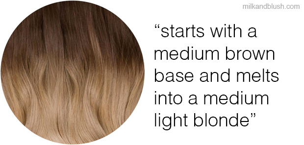 shade-of-month-bel-air-milk-and-blush-hair-extensions